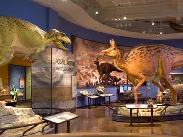 Naturhistorisk Museum San Diego