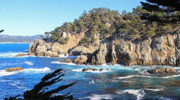 Cypress Grove Trail Point Lobos State Reserve