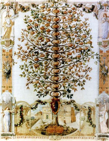 collezione Pellegrini di Cosenza