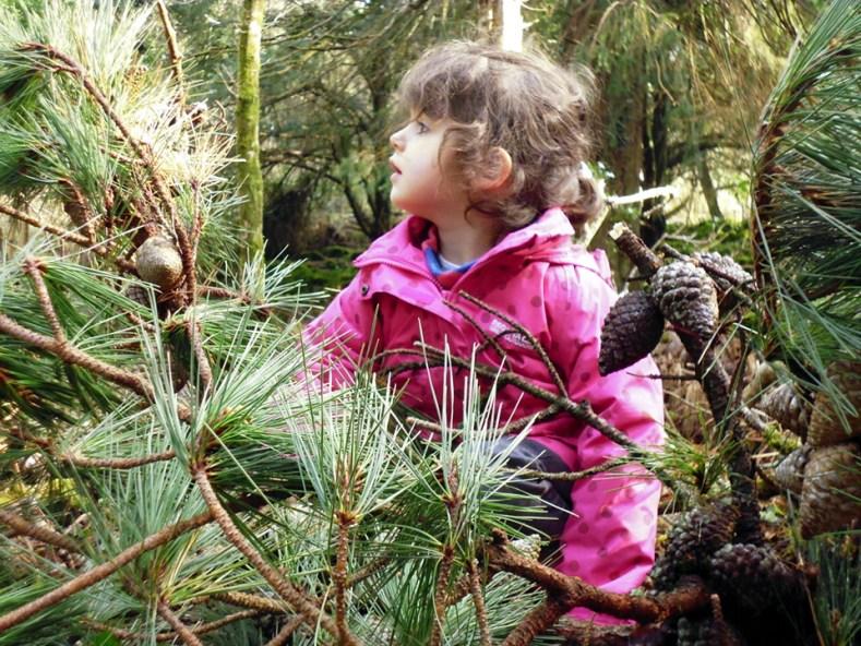 Sarah & pine cones P1010516