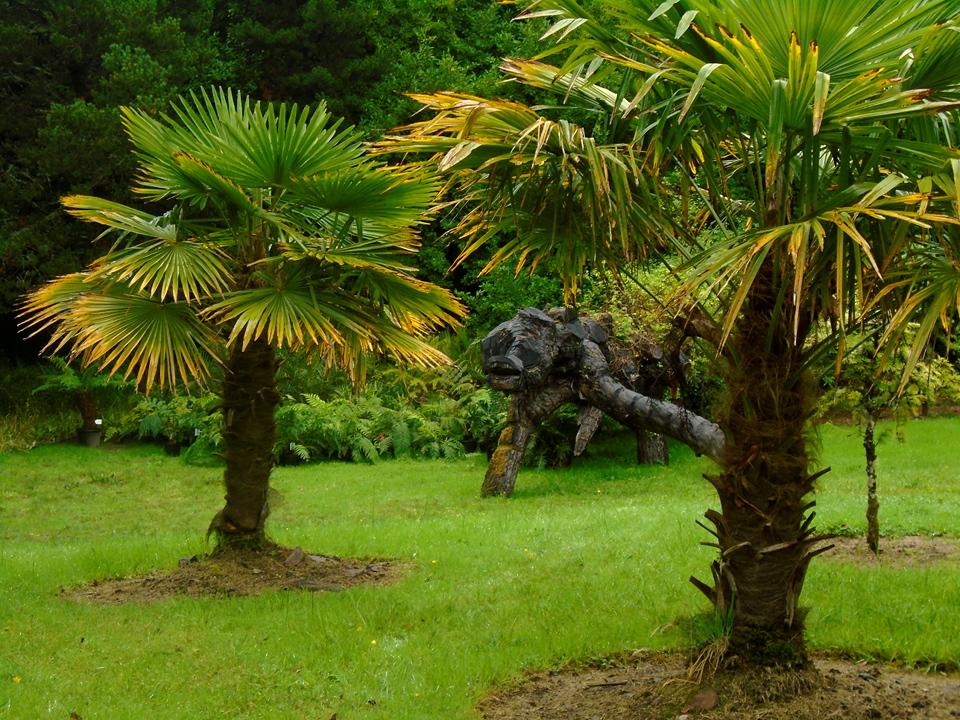 palms and tree sculpt DSC00770