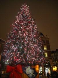 8 Christmas Trees Across London - Guide London
