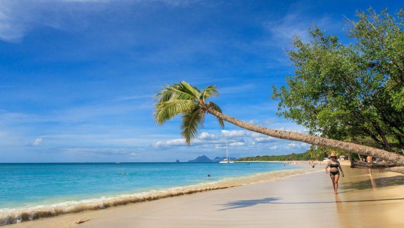 À la découverte des plus belles destinations de la Martinique