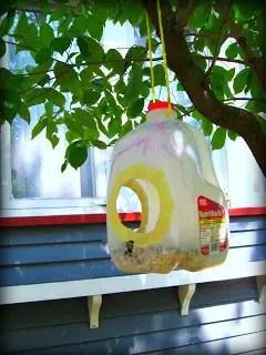 13 Ways to Build a Bird Feeder from Milk Jug  Guide Patterns