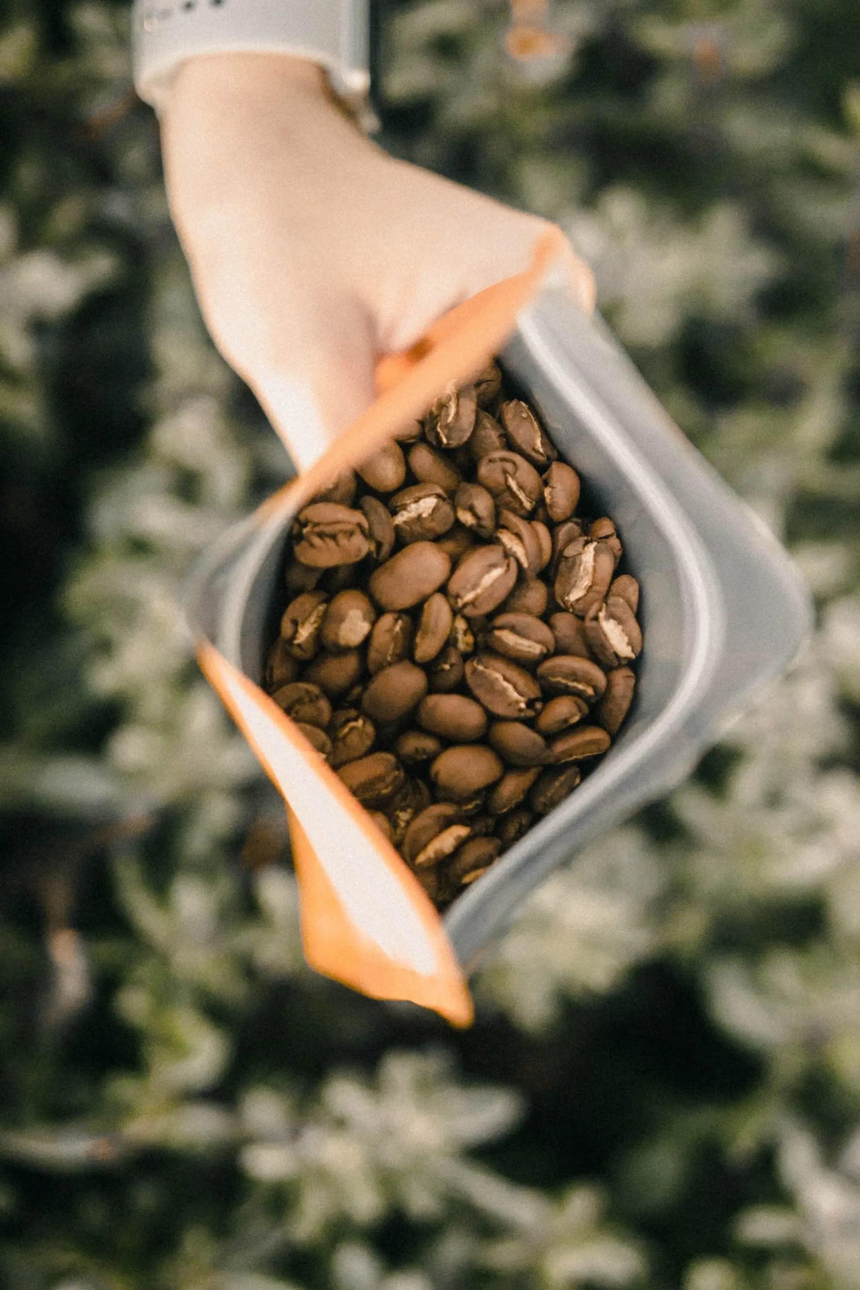 black coffee beans pack