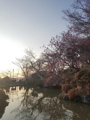 Kiyomizu-dera pond