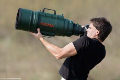 Photographer Job