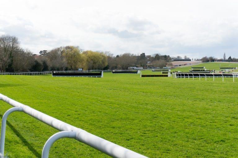 Paul Nicholls Four Cheltenham Wins