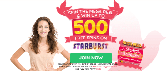 Get Up To 500 Free Spins at Dove Casino