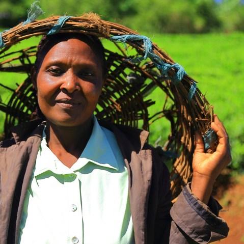 Contadini in Kenya