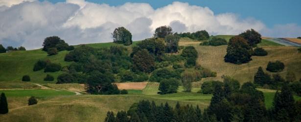 Sole e nuvole, luci ed ombre (Passo Bordala – Comune di Ronzo-Chienis)