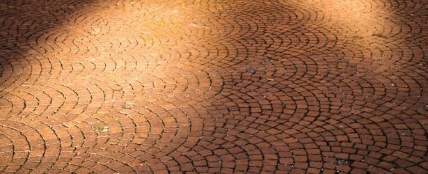 Macchie di sole – Bologna [2015]