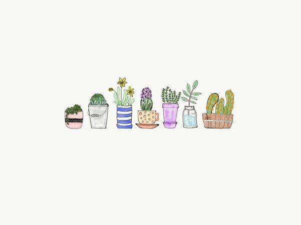 Everyday Plant - £3.00