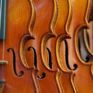 Toutes les tailles d'instruments sont disponibles