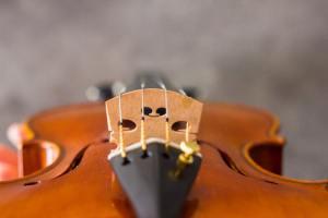 Comment le luthier sculpte votre son grâce au chevalet ?