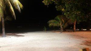 Un luthier en Guadeloupe à la plage
