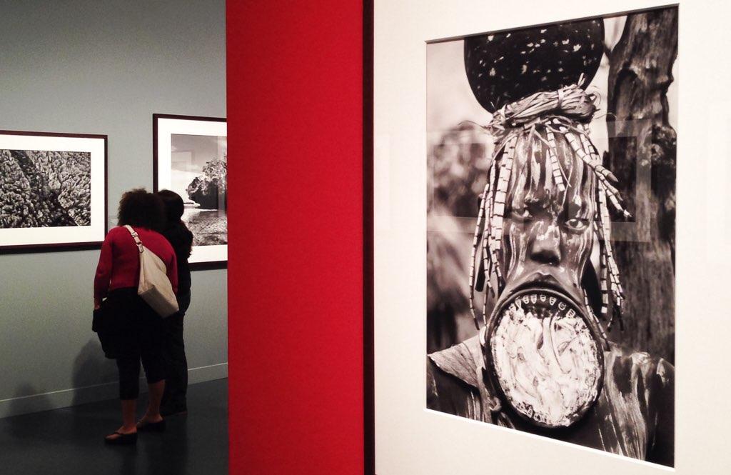 Sobre l'exposició Gènesi de Sebastião Salgado