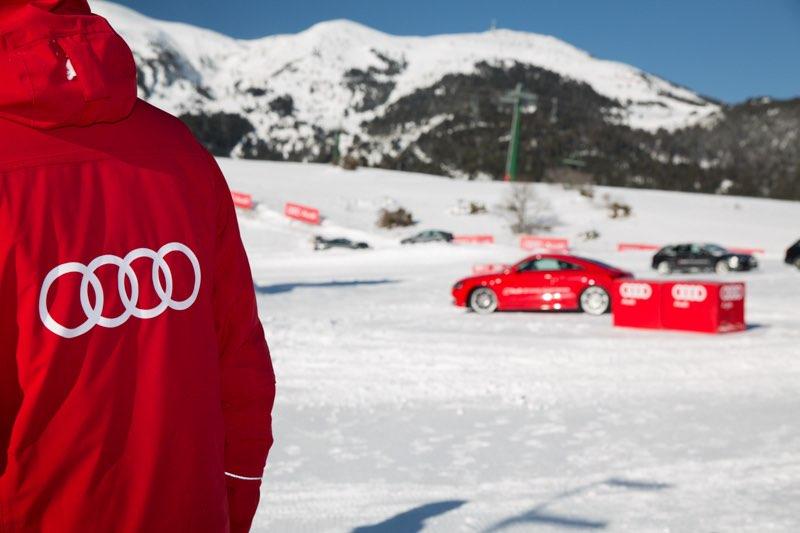 Audi_006