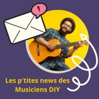 musiciens diy
