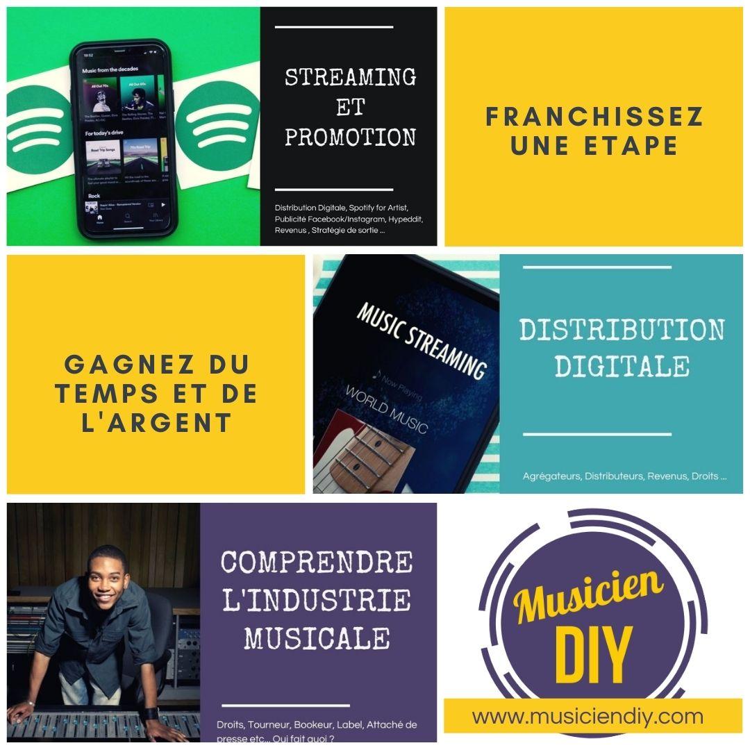 distribution digitale