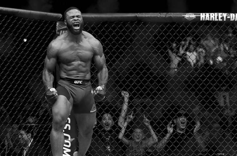 UFC 209, simulamos los combates más importantes del evento