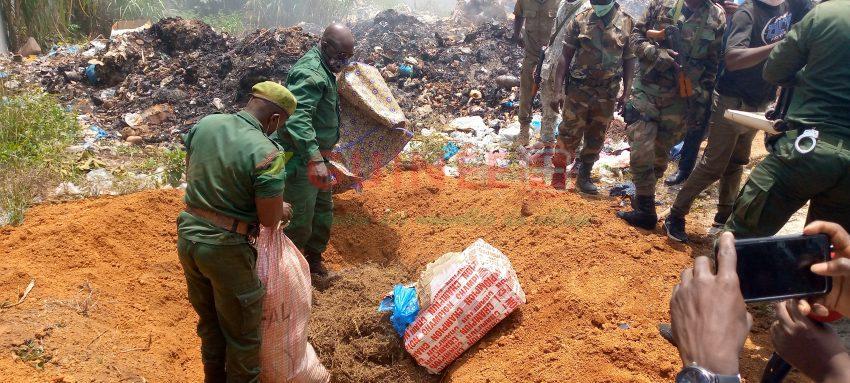 N'Zérékoré : 236 kg de drogues, 8 cartons de produits périmés et des gris-gris incinérés par les autorités !