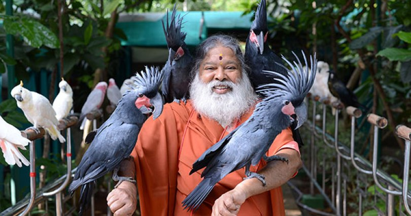 Most bird species in an aviary tcm25 477003 - O maior aviário do mundo - O aviário mágico
