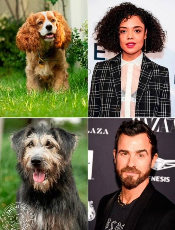 la dama y el vagabundo pelicula 2019 perros 1