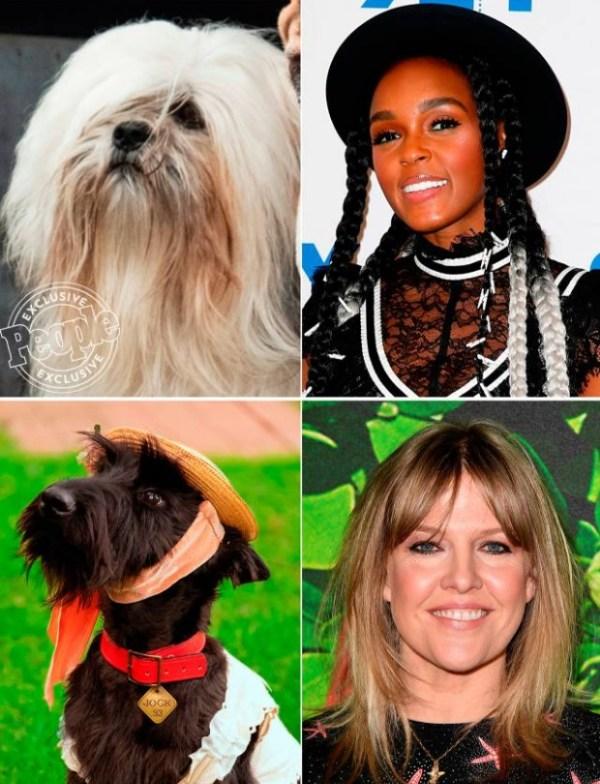 la dama y el vagabundo pelicula 2019 perros 2