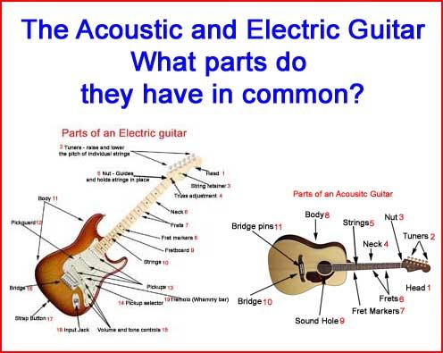 Parts Of A Guitar Guitar Diagrams