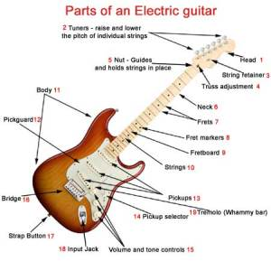 Parts of an electric guitar  What makes a electric guitar