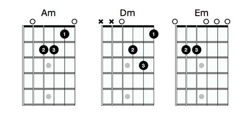 The prodigy на акустической гитаре washburn