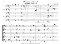AndanteTchaikovsky