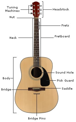 Parts Of A Guitar Learn The Guitar's Anatomy Guitar Lesson World