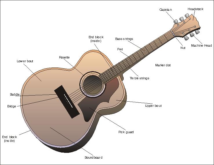 Acoustic Guitar Diagram