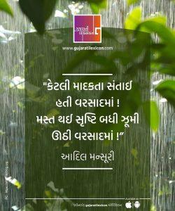 Gujarati Quote – 7 November
