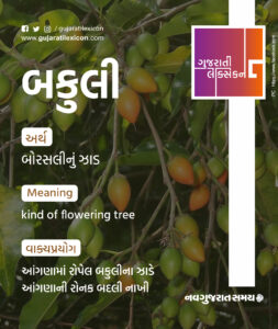 Gujarati Lexicon Word Of The Day – 12 December