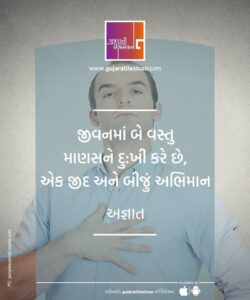 Gujarati Quote – 2 December