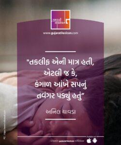 Gujarati Quote – 9 December