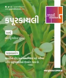 Gujarati Lexicon Word Of The Day – 16 February 2020