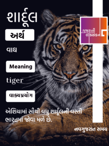 Word of the day – 29 July 2020