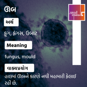 Word Of The Day – 25th May 2021