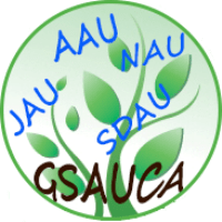 GSAUCA Choice Filling