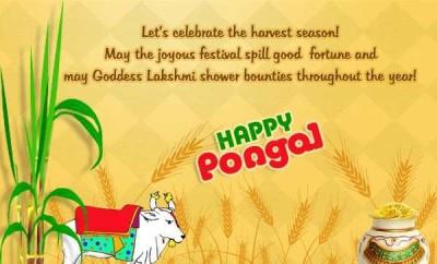 happy pongal wallpaper 2018