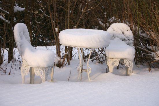 Haven dækket af sne