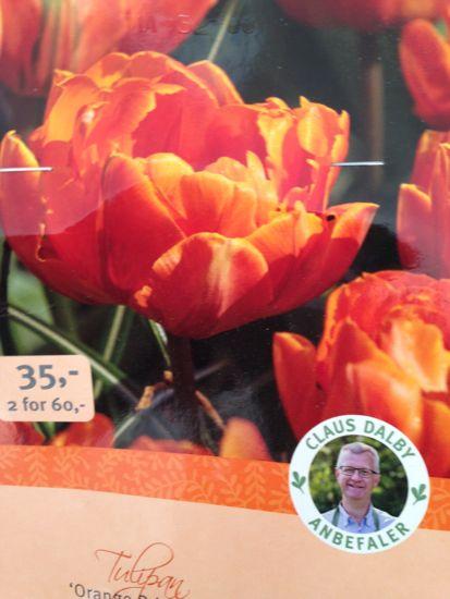 Claus Dalbys tulipanløg