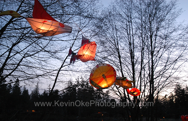 Paper lanterns at the annual North Pender Island Magic Lake Lantern Festival. Celebrate the New Year, presented by Three on the Tree Productions, Pender Island, BC, CanadaNorth Pender Island Magic Lake Lantern Festival, Pender Island