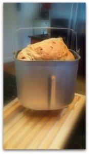 berryseed breadx
