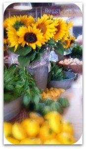 boggyflowersx