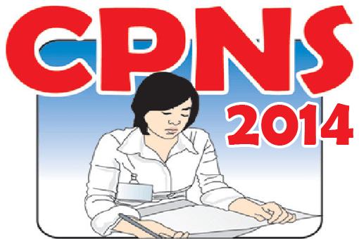 Solusi Dari Masalah Yang Sering Timbul Dalam Pendaftaran CPNS Tahun 2014